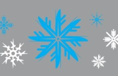Set Of Various Snowflakes Vector