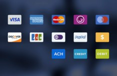 13 Payment Credit Card Icons PSD