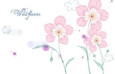 Hand Drawn Wild Flowers Vector Illustration