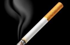 Realistic Burning Cigarette Vector