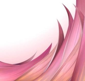 Fresh Flower Background Vector 01