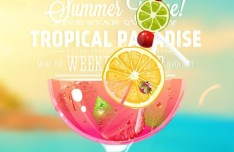 Summer Vacation Cool Juices Vector