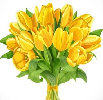 Gold Tulip Bouquet Vector