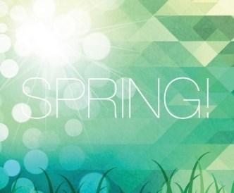Fresh Spring Geometry Background Vector 01