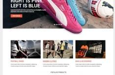 Biruang eCommerce Website Template PSD