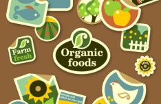 Organic Food Sticker Set Vector