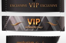 Dark VIP Card Design Templates Vector
