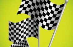 F1 Racing Flags Vector