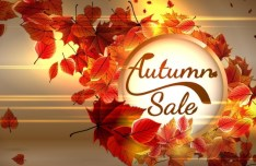 Elegant Red Leaves Autumn Sale Vector Background