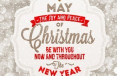Beautiful Merry Christmas Sign Vector