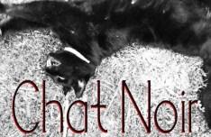 Chat Noir Font