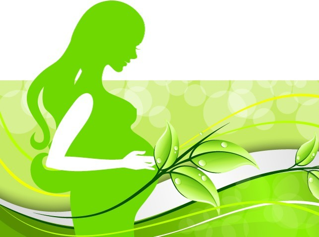 Green Pregnant Woman Silhouette Vector