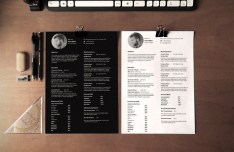Ultra Minimal Resume CV Template