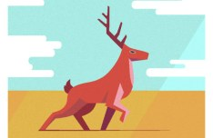 Vector Deer Illustration