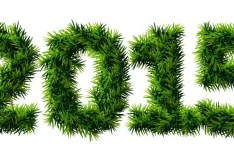 Green Grass 2015 Vector