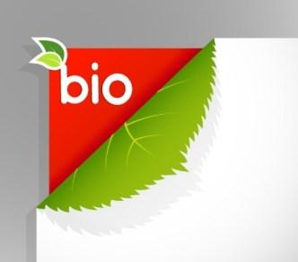 Green leaf BIO Card Vector
