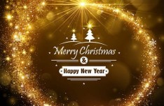Shiny Gold Christmas & New Year Background Vector