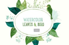 Watercolor Leaves And Bird Vector