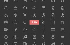 49 Thin Line Icons PSD