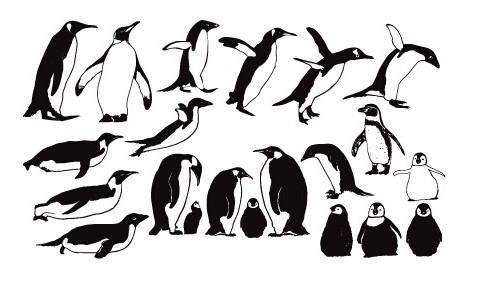 free penguin silhouette set vector - titanui
