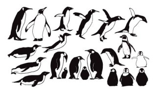 Penguin Silhouette Set Vector