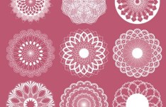 Pure White Lace Pattern Set Vector