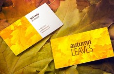 Autumn Leaves Business Card Mockup PSD