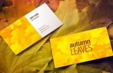 Autumn Leaves Business Card Mockup PSD