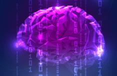 digital-abstract-brain-vector-01