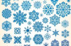 various-snowflakes-vector