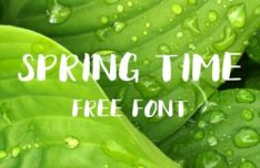 Spring Time Brush Font