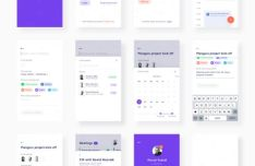 Planguru Mobile UI Kit For Sketch