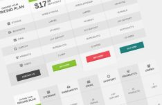 Flat Pricing Table & Comparison Table PSD Template