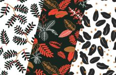Vintage Leaves Patterns Vector