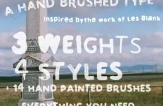 Quite Blankly Brush Typeface