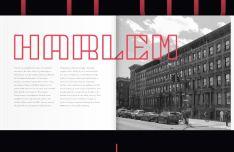 NY Bricks Font