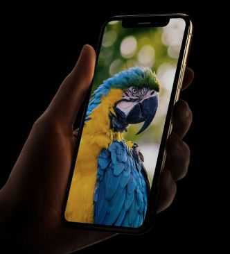 iPhone XS In Hand Mockup PSD