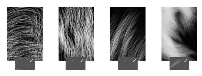 4 Hair Brushes For Photoshop
