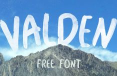 Valden Watercolor Brush Font
