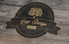 Realistic Wood Logo Vector Template