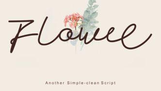 Flowee Script Font