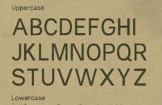 Prune Typeface