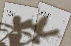 Minimal Light Calendar 2021 Vector Template