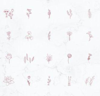 20 Botanical Instagram Highlight Covers Vector
