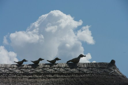 Ducks sitting on the thatched roof