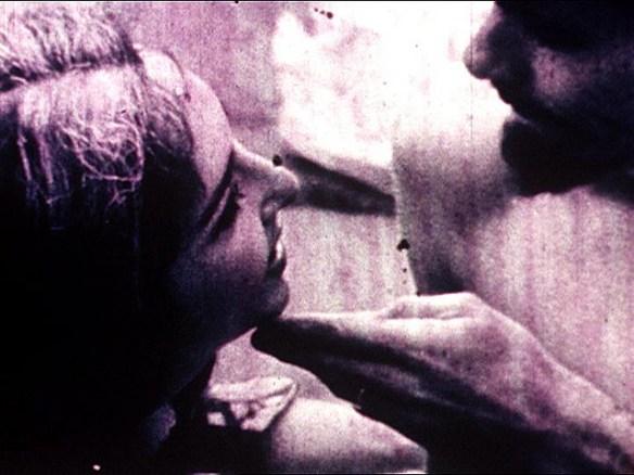 Carolee Schneeman, Fuses, 1964-1966