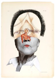 Wangechi Mutu, The Histology of the Different Tumors of the Uterus, 2001 collage on medical illustration paper.