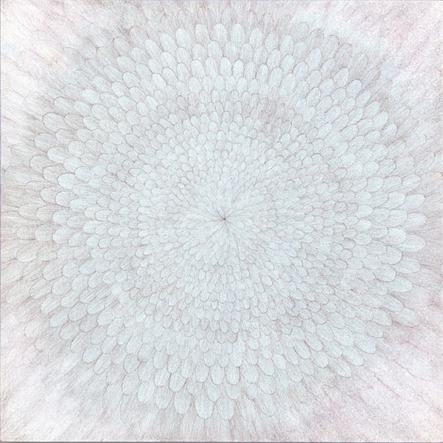 Chrysanthemum (version 1, a)