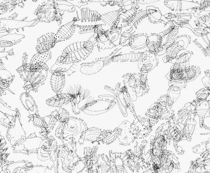 Mia Rosenthal Life on Earth, (detail), 2013 38 x 55 inches (irregular) Ink on paper