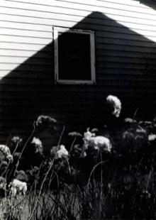 "Tamsen Wojtanowski, home, 2014. Digital Archival Print, 30""x42"". Edition of 5."
